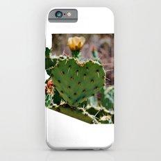 Sonoran Love / Arizona Slim Case iPhone 6s