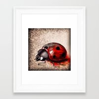 ladybug Framed Art Prints featuring Ladybug by Werk of Art