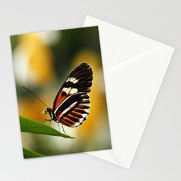 Heliconius Butterfly Stationery Cards