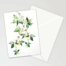 Tree Branch Stationery Cards