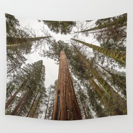 Sequoia Stretch - Nature Photography Wall Tapestry