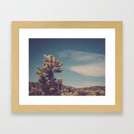 Cholla Cactus Garden II Framed Art Print
