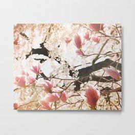 Spring Paradise Metal Print