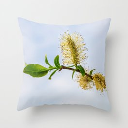 Spring willow branch Throw Pillow