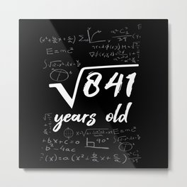 29th Birthday Geek Funny Mathematician Metal Print