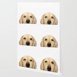 Golden retriever Dog illustration original painting print Wallpaper