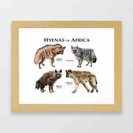 Hyenas of Africa Framed Art Print