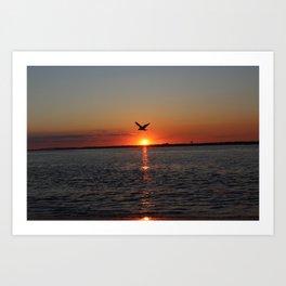 Flying at Sunset Art Print