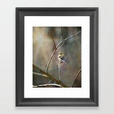 Morning Goldfinch Framed Art Print