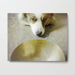 Zen Dog Metal Print