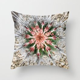 Overview of a Cactus Throw Pillow