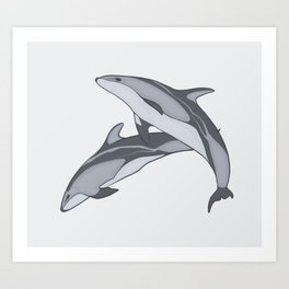 Pacific White Sided Dolphins Art Print