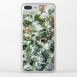 Lemon Girl Scout Cookies Strain Clear iPhone Case
