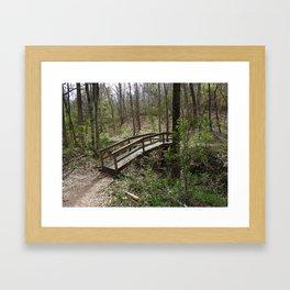 Bridge to Imaginatio Framed Art Print