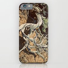 Desert spirit Slim Case iPhone 6s