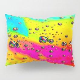 Rainbow Landscape Pillow Sham