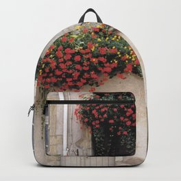 Urban Garden - France Backpack