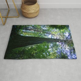 Tall Trees in The Dense Forest Rug