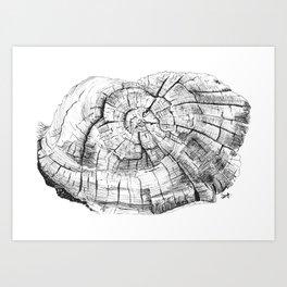 Tree log Art Print