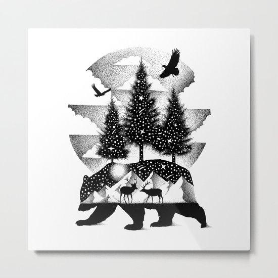 A NIGHT IN ALASKA Metal Print