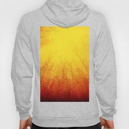 Linear Radial Abstract Hoody