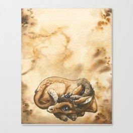 Baby Unicorn Faun Canvas Print