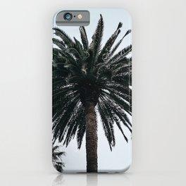 Hau`oli iPhone Case