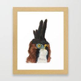 Hawk Eagle Portrait Framed Art Print