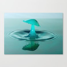 A  splash of water Canvas Print