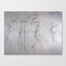 Three Birds Canvas Print