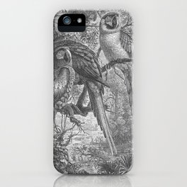 Parrots - Macaws iPhone Case