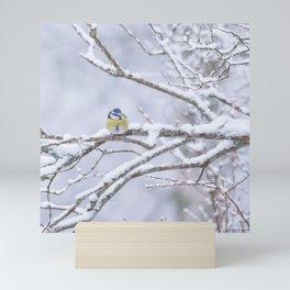 Blue Tit On A Snowy Branch Winter Scene #decor #society6 Mini Art Print
