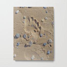 Pebbly Beach Walk Metal Print
