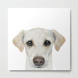 Rescue Dog series, lab mix, Waffle Metal Print