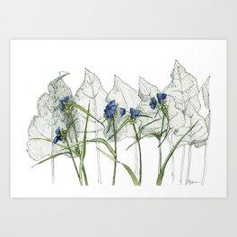 Prairie blue Art Print
