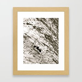 The Ant Goes Marching Framed Art Print