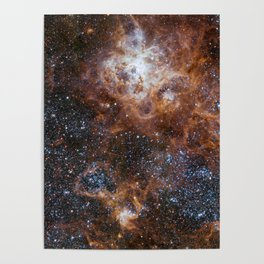 Tarantula Nebula in the Large Magellanic Cloud Poster