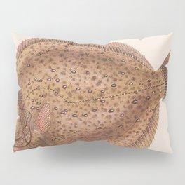 Vintage Flounder Fish Illustration (1919) Pillow Sham