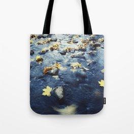 Autumn Leaves, Color Film Photo, Analog Tote Bag