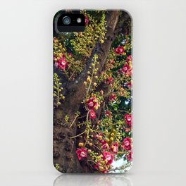 Monkey's Apricot iPhone Case