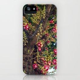 Monkey's Apricot iPhone Case