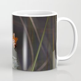Thistle blooms provide a midday meal for a gulf fritillary butterfly at Merritt Island National Wild Coffee Mug