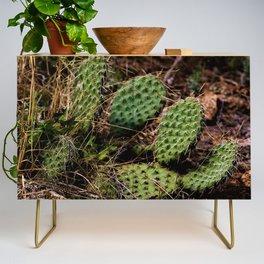 Cactus Credenza