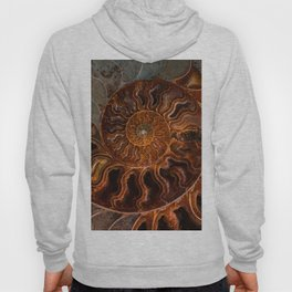 Earth treasures - brown and orange fossil Hoody