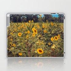 Summer Dance Field of Sun Flowers Botanical Landscape Fine Art Print Laptop & iPad Skin