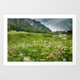 White Pine Valley Art Print