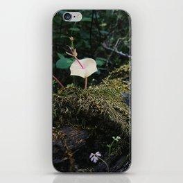 May Moss iPhone Skin