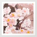 Pastel Pink Cherry Blossom Soft Brown Background #decor #society6 #buyart by pivivikstrm