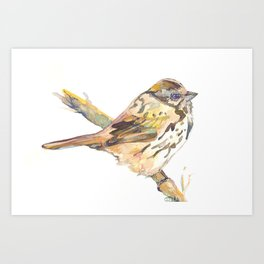 Lovely Bird №2 Art Print