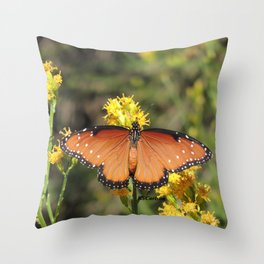 Queen Butterfly on Rubber Rabbitbrush in Claremont CA Throw Pillow